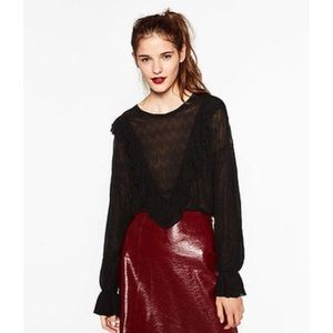 ZARA Victorian Style Front Frill Ruffle Sheer Top